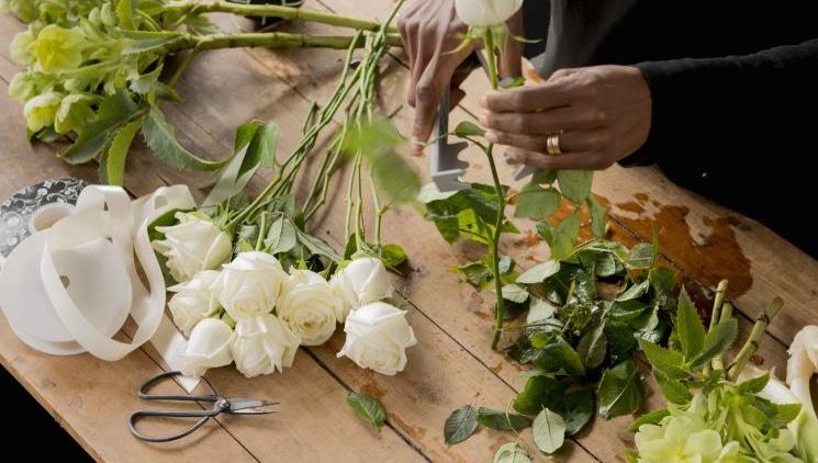Bloemen Verzorging